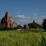 Le temple Dahmmayan Gyi à Bagan
